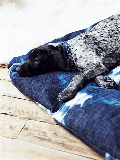 dog beds for people cute pet beds teepees free people