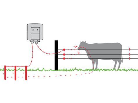 recinzioni per animali da cortile strumenti di gestione e cattura kit recinzioni
