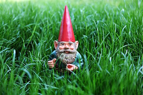 royalty  garden gnome pictures images  stock