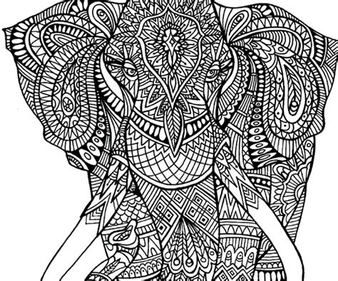 coloring pages for adults of elephants adult coloring pages elephant