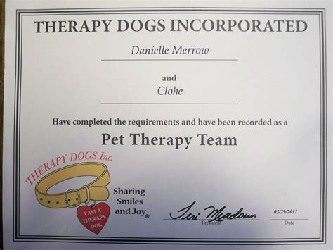 for therapy certification 95620 pet therapy certification pet therapy certificationalexaprintablecertificates