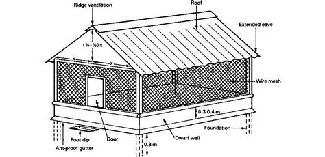 chicken farm house design interesting poultry house design for broiler contemporary plan 3d house goles us