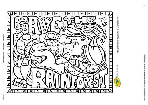 rainforest coloring sheets printable coloring pages