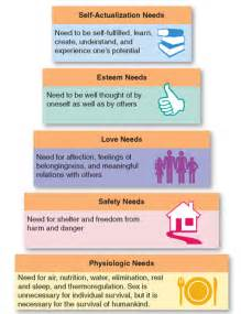 basic needs for a new home basic human needs personal and environmental health