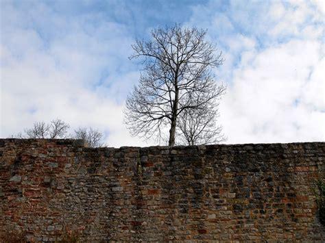 botenlauben castle castillo de botenlauben burgruine botenlauben
