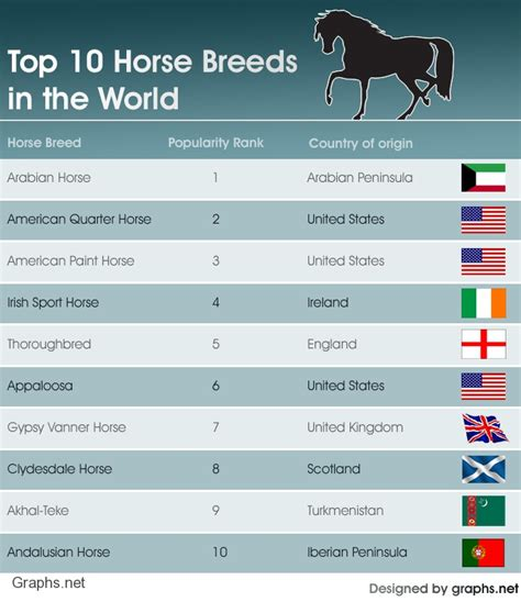 worlds breed top ten most popular breeds top ten lists top 10 lists breeds picture