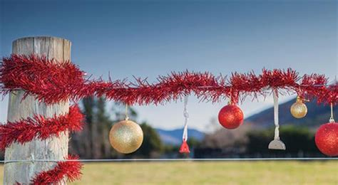 new zealand decorations decoration new zealand all ideas about