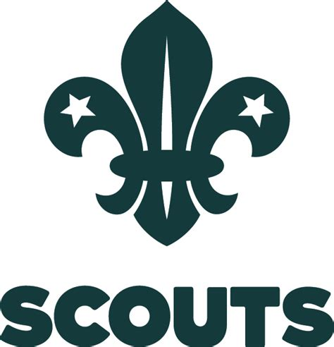 what is the boy scout s name in the film up 13th tynemouth scouts sections