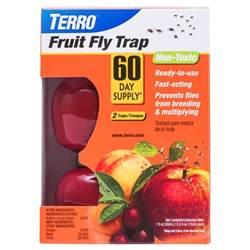 Fruit Flies In Bedroom by Does Fumigating Get Rid Of Fruit Flies Myideasbedroom