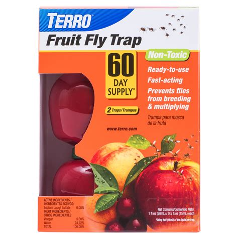 fruit flies in bedroom fruit flies in bedroom flying bugs in bedroom www