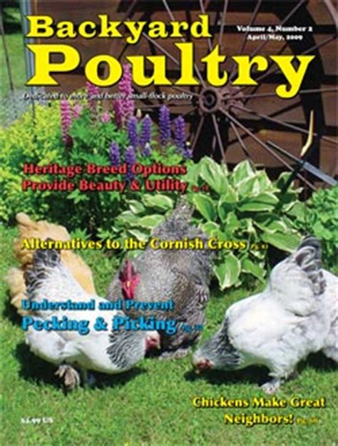 backyard poultry magazine living homegrown