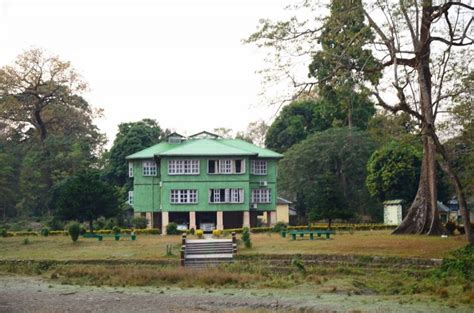 forest bungalow in west bengal holong