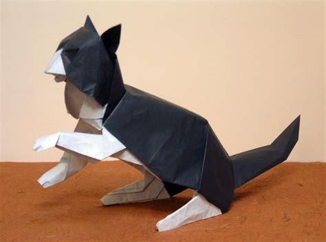 Origami David Brill - origami david brill