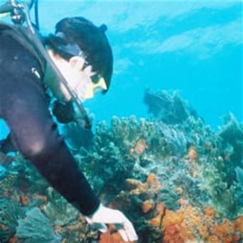 public boat r tavernier florida keys dive center scuba diving tavernier fl yelp