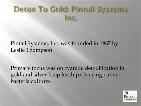Detox Systems Inc detox t to gold 2 version