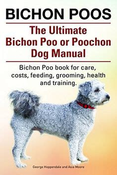 y i c s book of terrier care books 1000 images about poochons on bichon frise