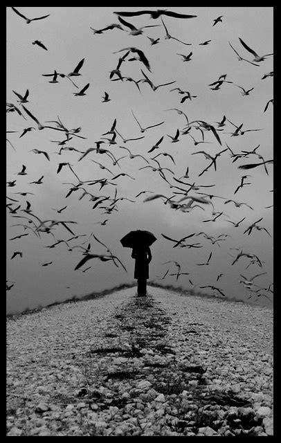 İki Ters Bir Yüz: Yalnızlık görecelidir...