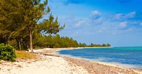 cruise grand cayman best grand cayman cruise shore excursion tour reviews