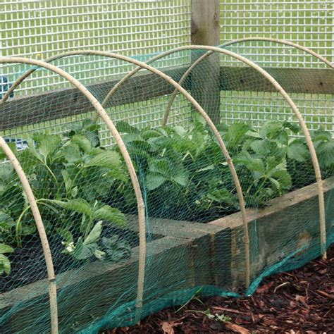 protect plants fruits   quality garden netting