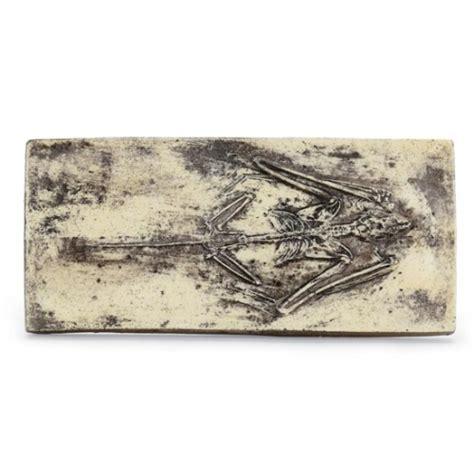 Fossil Replika Multired Shopper replica fossilized bat skeleton plaque bat skeleton fossil