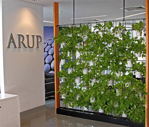plant partition green wall for your office why vertical wall gardens are