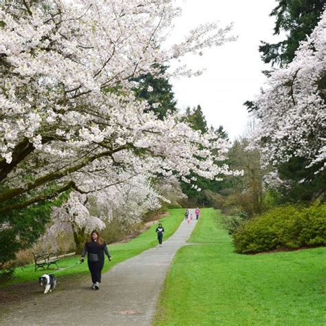 Uw Botanic Gardens Uw Opens Search For New Botanic Gardens Director