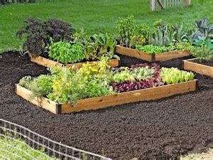 raised garden bed kits lowes the garden inspirations