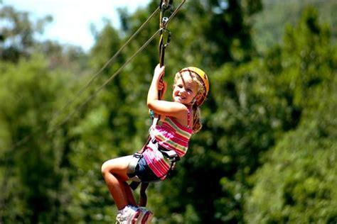 Backyard Zipline For Kids Making A Zip Line For Your Kids Dimension Zip Lines
