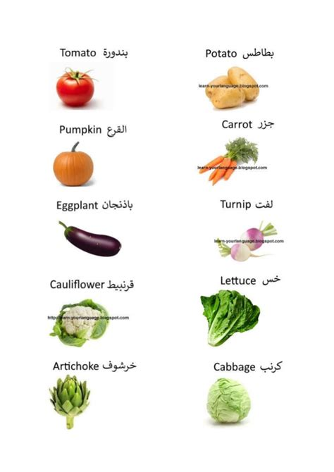 vegetables names 22 names of vegetables in and arabic