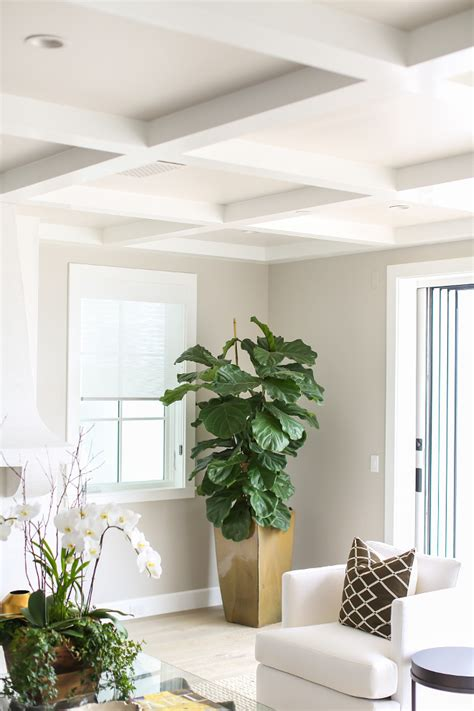 california house with crisp white coastal interiors home bunch interior design ideas