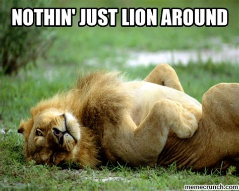 Lion Meme - lion around