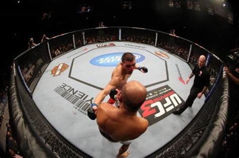 cage fighting     considered  dangerous