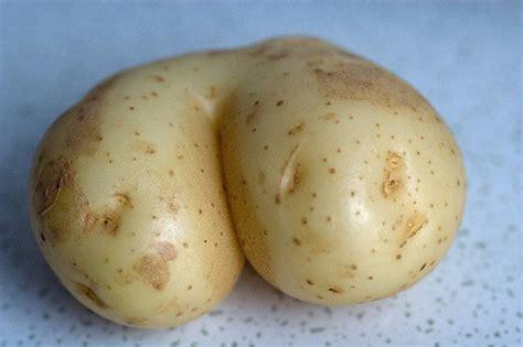 A Potato by Photo