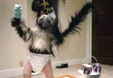 puppy monkey baby 2017 69 puppy monkey baby s espn