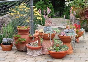 Small Container Garden Ideas Container Gardening Ideas For Small Gardens 161 Hostelgarden Net
