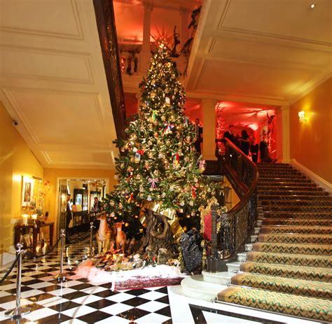 warum ein weihnachtsbaum my blog