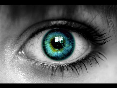 imagenes de ojos sin fondo miradas wallpapers im 225 genes taringa