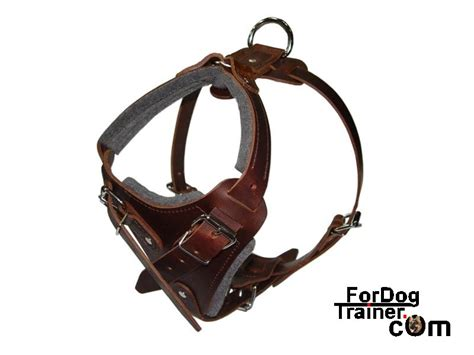 best harness for dogs leather harness leather harnesses