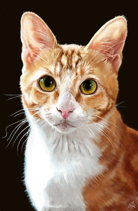 cat painting pics realistic cat portrait by crypticmanifestation on deviantart