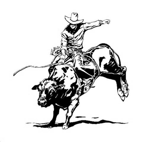 welcome to laser engraved heirlooms bull riding