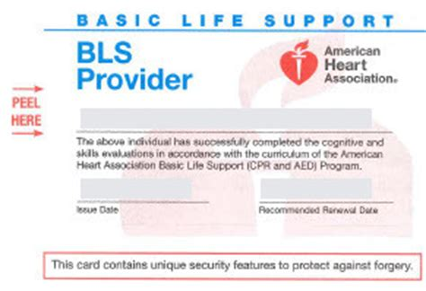 Heartcode Bls Healthcare Provider Card Template