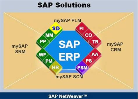 sap tutorial sd module erp sd erp operations scn wiki
