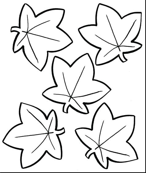 Autumn Coloring Pictures by Fall Leaves Coloring Pictures Thrawn Info