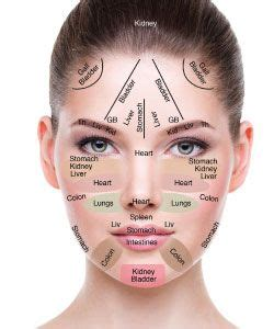 face mapping on pinterest estheticians facial massage 1000 images about beauty biz esthetician skin care pro on
