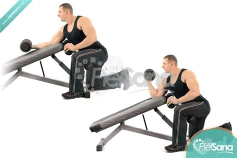 incline bench bicep curls incline bench dumbbell curl