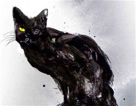 the black cat by edgar allan poe adapted text first edgar allan poe the black cat on behance