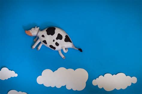mucca volante la mucca volante di paolo di paolo il in stop