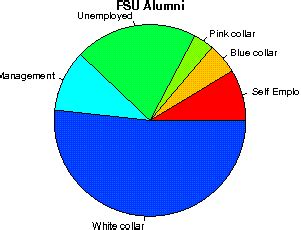 Ecu Mba Reviews by Florida State Studentsreview Alumni College