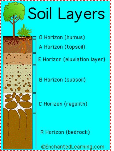 soil horizons diagram rocks and minerals dictionary e enchantedlearning