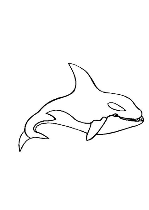 Mewarnai Hewan Laut mewarnai hewan binatang laut gif gambar animasi animasi bergerak 100 gratis